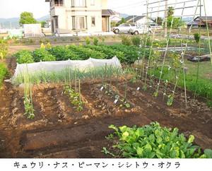 017 5月の風は家庭菜園の季節。「4月から5月にかけては身体を動かし、いじめ... 5月の風-