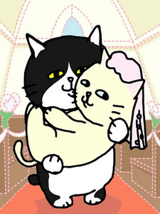 11_03_19_cats_wedding1