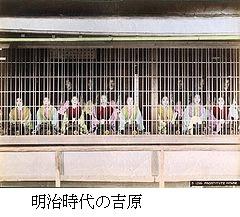 240px82_yoshiwara_girls1